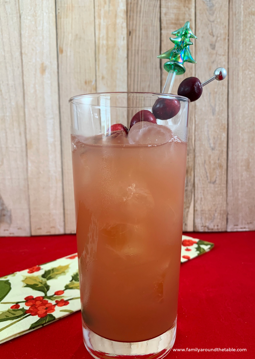 Madras cocktail garnished with fresh cranberries.
